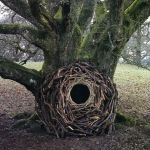 andy-goldsworthy-1-1