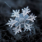 source:  http://www.booooooom.com/2013/11/20/photographer-alexey-kljatov-tapes-lens-to-camera-to-take-incredible-macro-snowflake-photos/