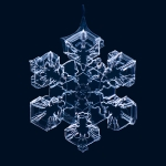 source: http://www.thisiscolossal.com/2012/02/gorgeous-macro-photographs-of-snowflakes-by-matthias-lenke/