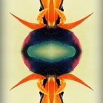 Experimental work with PS Express, Be Funky, OrangeCam
