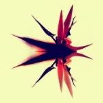 Experimntal work with PS Express, Be Funky, OrangeCam