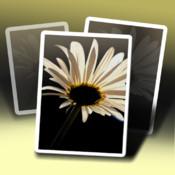 pic jointer app logo