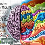 Left Brain Right Brain painting and vocabulary