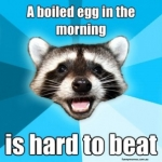 egg-meme-300x298