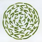 source: http://www.thisiscolossal.com/2012/10/the-geometric-food-art-of-sakir-gokcebag/