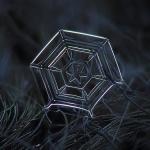 http://www.booooooom.com/2013/11/20/photographer-alexey-kljatov-tapes-lens-to-camera-to-take-incredible-macro-snowflake-photos/