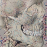 Pattern and skeleton image combined using Superimpose app - two transparent layers merged together.