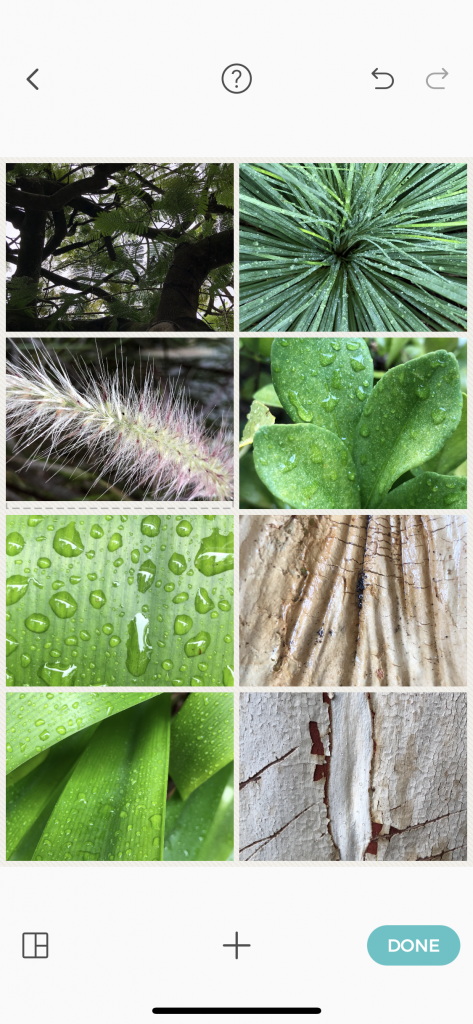 collage photos ipad